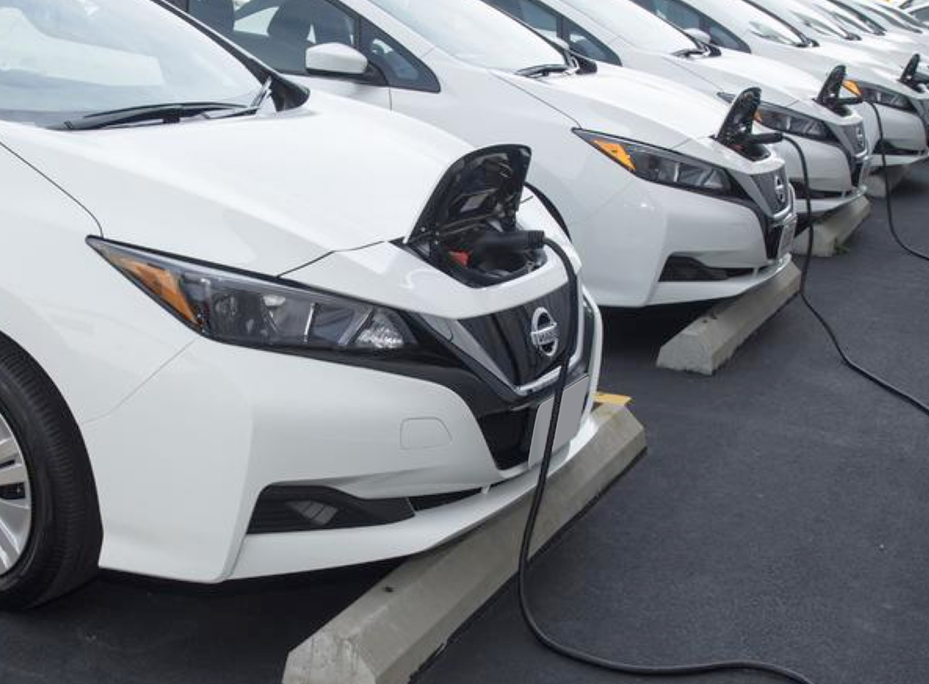 Fleet of white electric vehicules